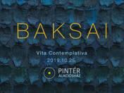 INVITATION TO THE OPENING CEREMONY OF VITA CONTEMPLATIVA EXHIBITION - 25/10/2019 18:00 CET