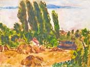 Balaton View