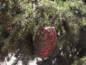 Pinetree Decorative  (Heart sparklers)