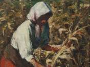 Among Corn (around 1917)