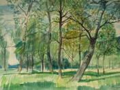 Trees of Fonyód
