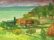 Balaton shore