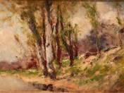 Trees at Waterside