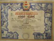 Shoemaker certificate of mastership