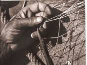 Fishermans' Net