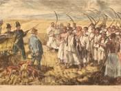 Reaper strike 1894