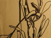 Flower Still Life (1961)