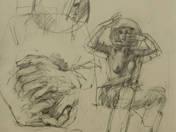 Untitled XVII. (1984)