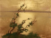 Afternoon Lights on Lake Balaton