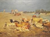 Herd at Noon