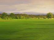 Spring Landscape (2012)