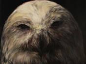 Snow owl (2016)