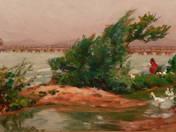 Balaton with Geese