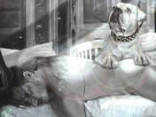 The Faithful, Crying Dog of the Dead Deerhunter
