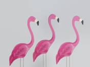 Two ... oh no, Three Flamingos (2017)
