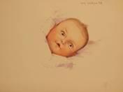 Album (122 studies)