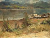 Ferry at Nagymaros