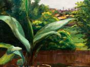 Still life with indoor plant - Still life