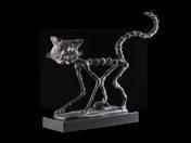 Oafish cat