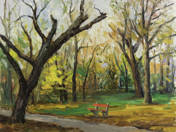 Park in Autumn with bench