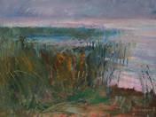 Reeds by Lake Balaton